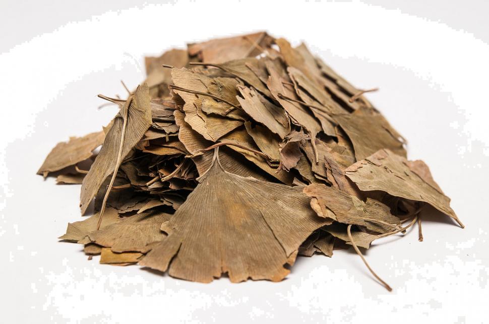 Сушеные листья Гинкго Билоба
